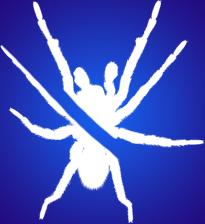spiderslash